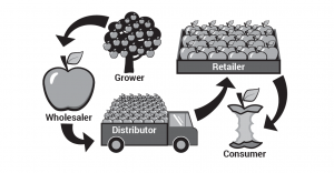 Food supply chain example